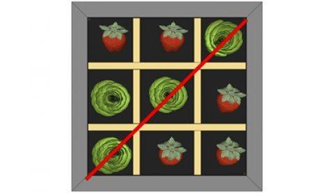 Potager en carrés ou casse-tête chinois ?
