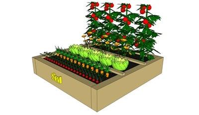 Planification des semis d'un carré de potager selon les critéres Solaires