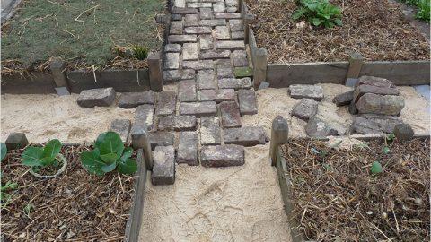 Des allées pour le potager en carrés sans creuser