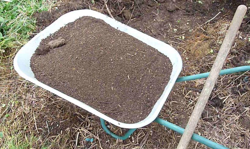 Pour la création du complexe argilo humique, j'ai utilisé du vieux compost tamisé.