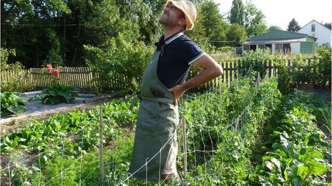 Jardinage debout pour jardinier malin V2