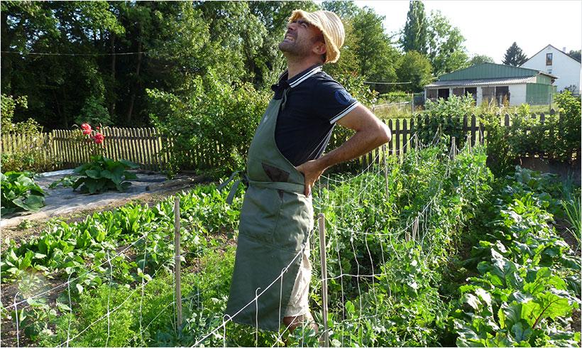 Jardinage debout pour jardinier malin v2 mon potager en for Jardin et jardinage