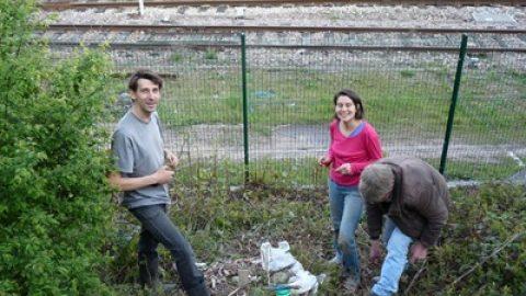 Mon blog respecte t'il l'éthique de la permaculture ?
