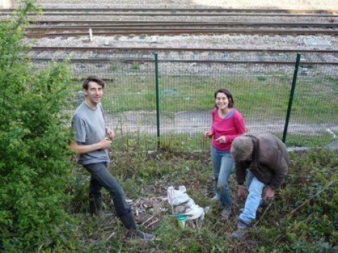 Mon blog respecte-t-il l'éthique de la permaculture ?