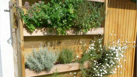 Fabriquer un jardin vertical