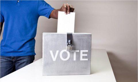 Votez pour le projet potager 2015