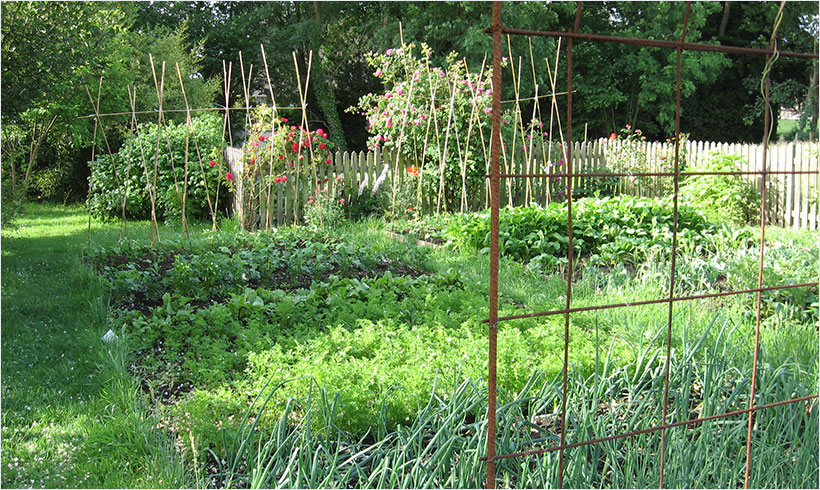 le seul conseil de jardinage valable mon potager en carr s. Black Bedroom Furniture Sets. Home Design Ideas