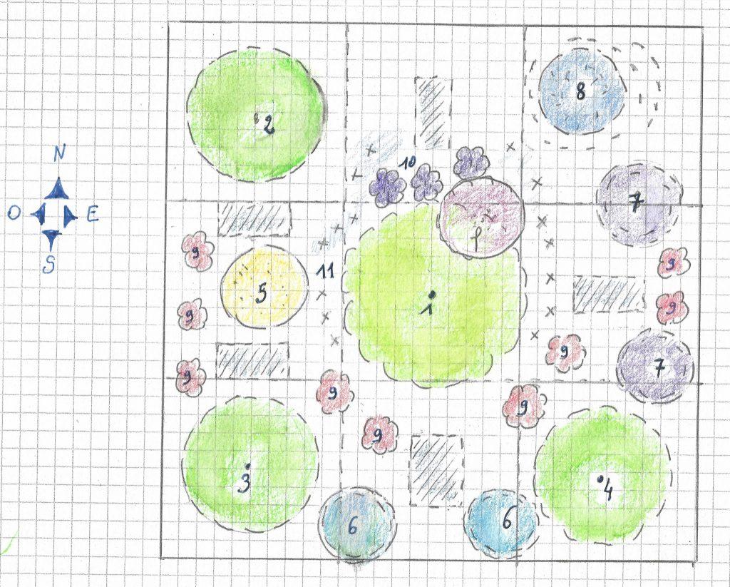Le plan patron d'un massif fruitier prêt à planter de 9m2