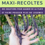 Mini potager Maxi Récolte