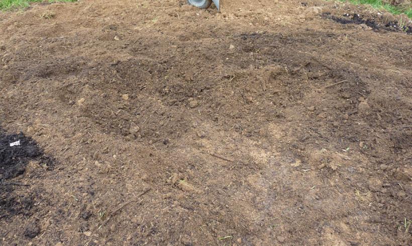 Remplir ses carré de potager est l'occasion unique d'amender la terre avec 50% de compost