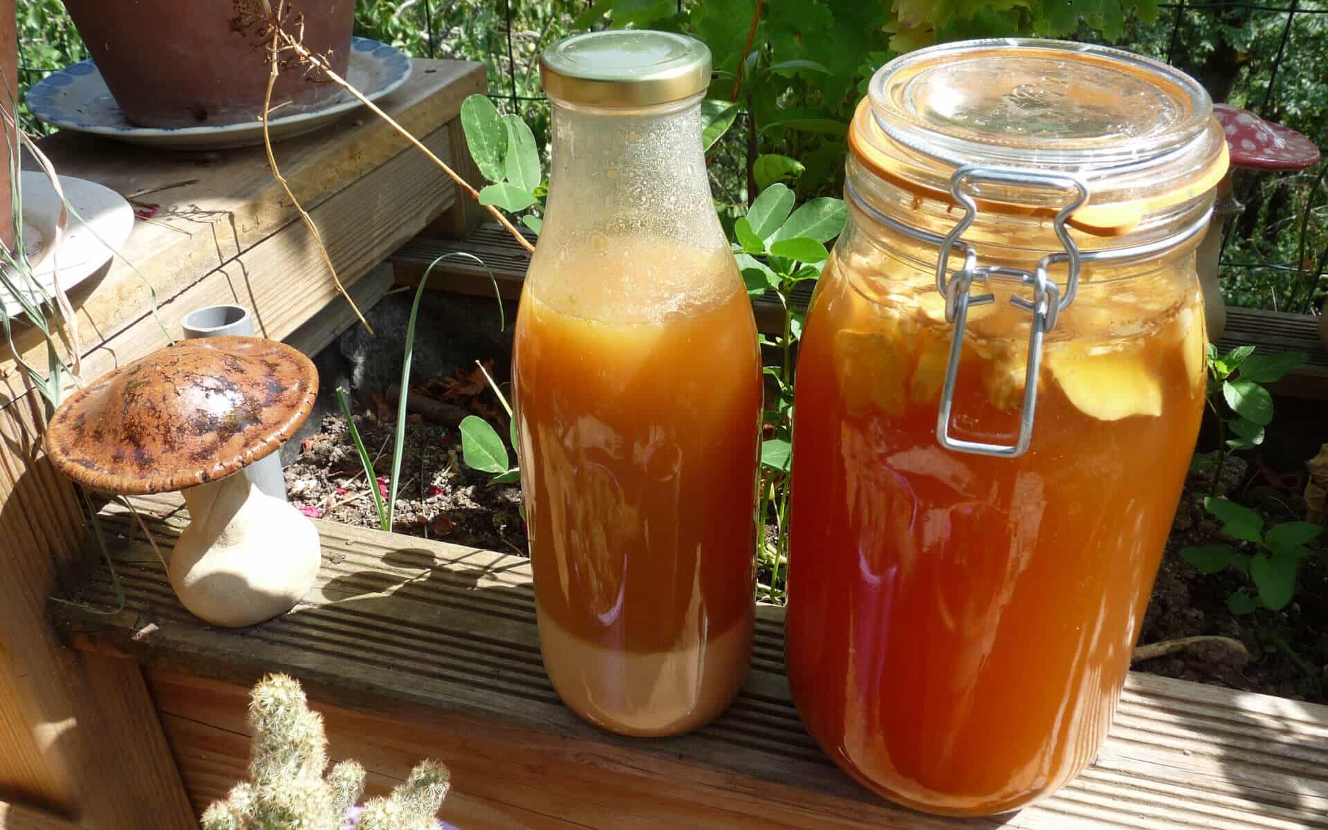 Ginger ale à base de gingembre et citron et bova bulgare à base de levain et farine de millet.