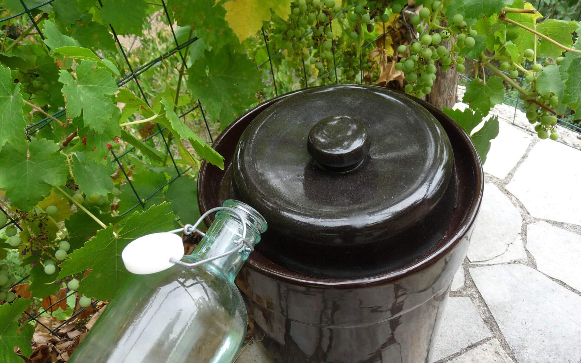 Durant la fermentation, maintenir un niveau d'eau constant dans la gorge circulaire.