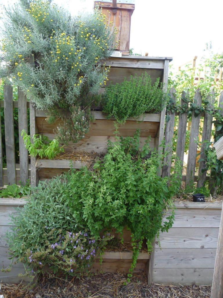 Potager vertical intégré a une clôture planté de nombreuses aromatiques.