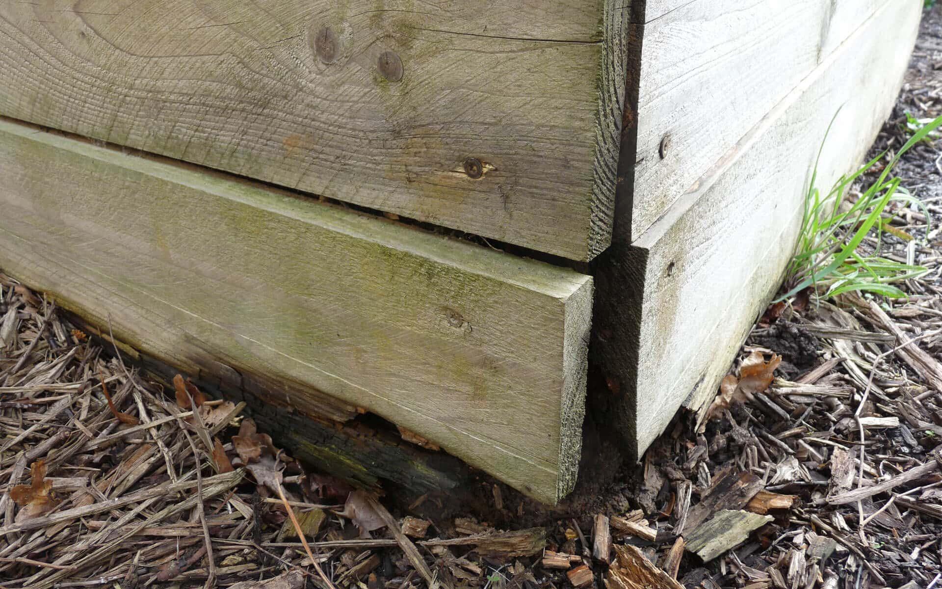 La planche du bas est trop recouverte par le broyat de bois, ce qui la fait pourrir plus vite.
