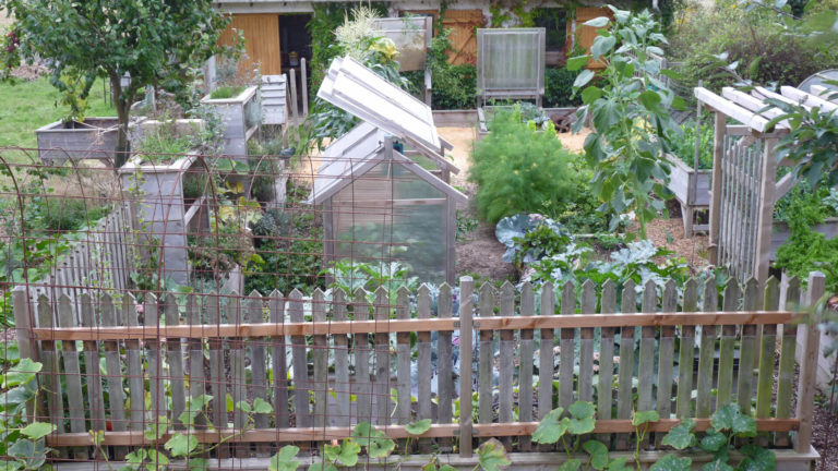 En 2014 je clôture le potager en carrés.